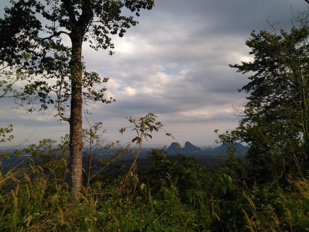 Vue sur la plaine peu après l'entrée en Malaisie